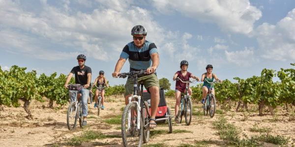 Reserva bicicleta o e-bike i recorre la Carretera del Vi