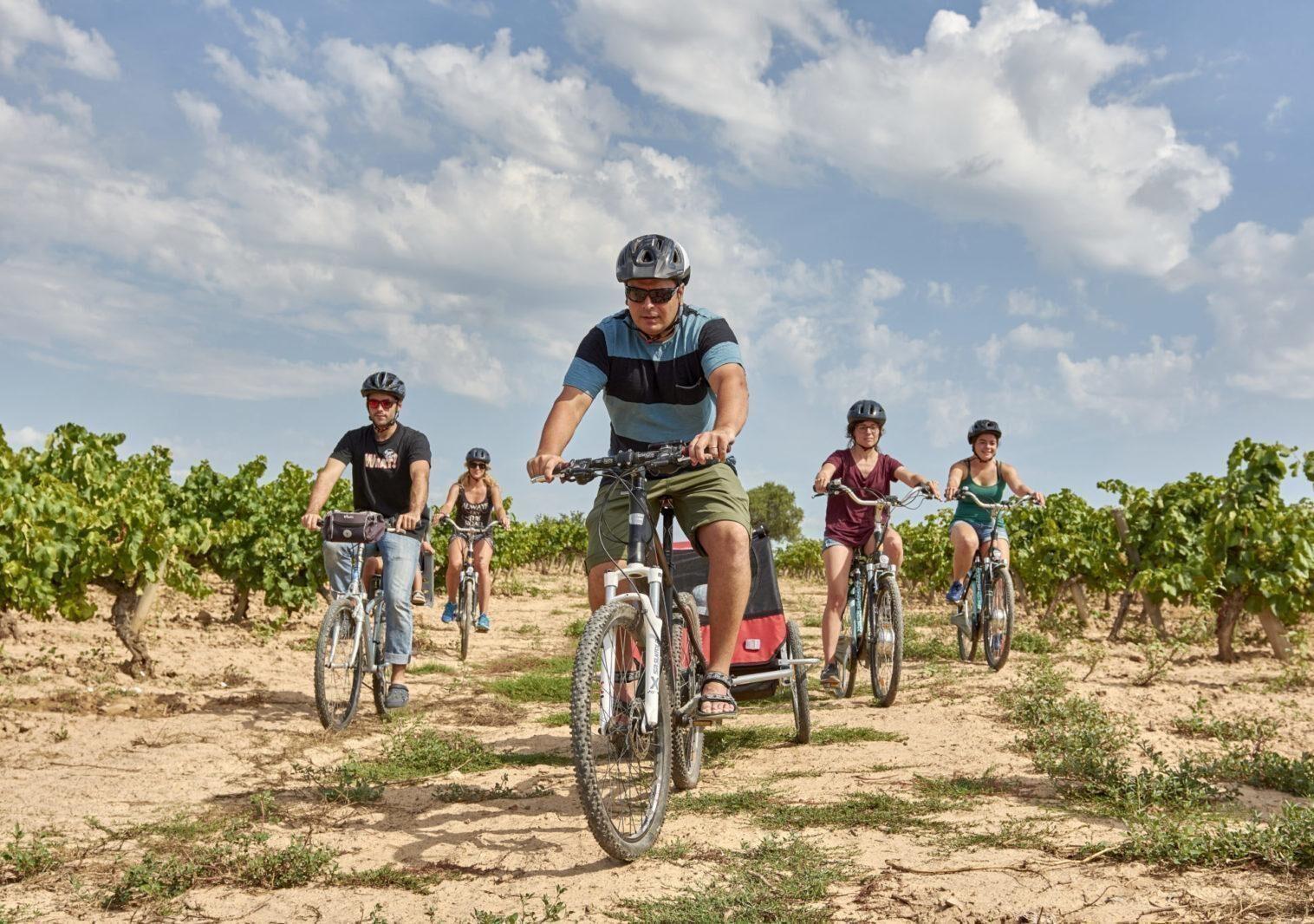 Visita celler de la Carretera del Vi en bicicleta o Ebike (3h)