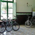 Alquiler de bicicleta y eBike en el Penedès
