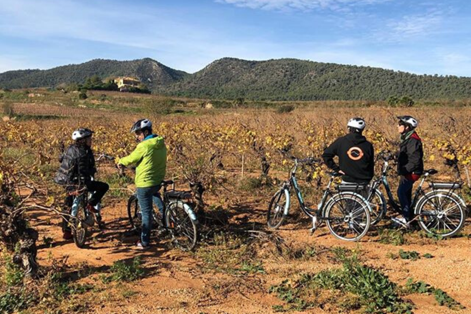 Visit a Winery on the Baix Penedès by Bicycle or Ebike