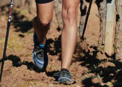 penedes-tour-esportec-walk